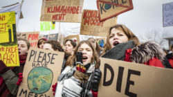 Das ipb in den Medien: Fridays for Future