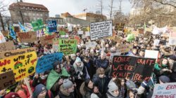 Ein Jahr Fridays for Future – ipb working paper erschienen